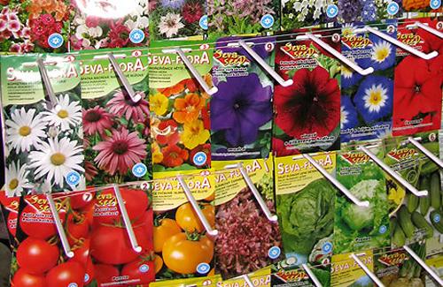 Картинки по запросу семена